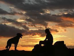 Il cane: animale da compagnia o da solitudine?
