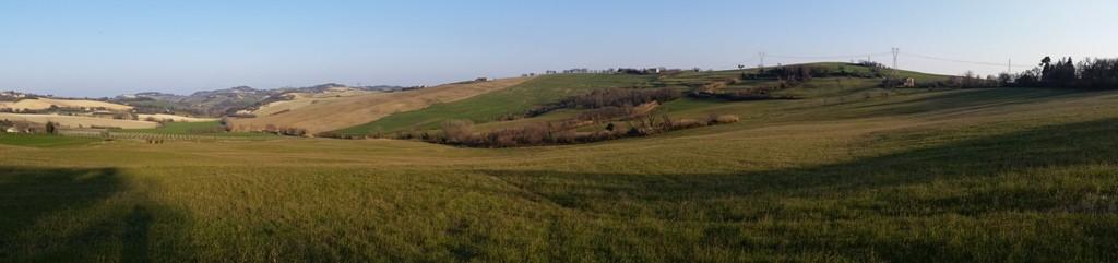 I terreni dove alleniamo Retrievers & Co